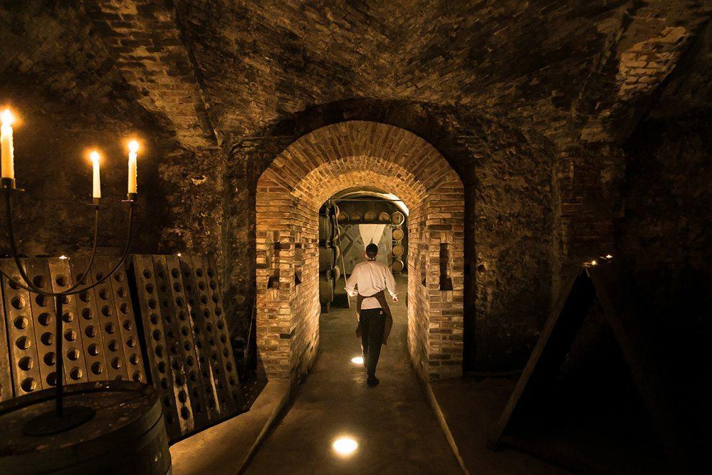 visual storytelling vino gavi