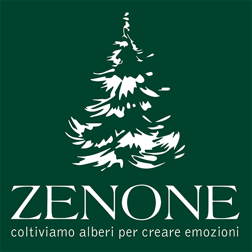 Agenzia web marketing Zenone